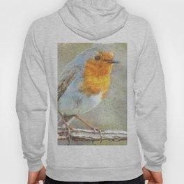 The Robin Is A Gabriel Watercolor Hoody