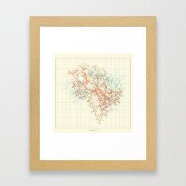Arbor Ludi: Fischer Framed Art Print