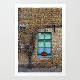 Window Framer Art Print