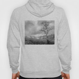 Mist in mountains Hoody