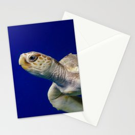 Sea Turtle 2 Sea Animal / Underwater Wildlife Photograph Stationery Cards
