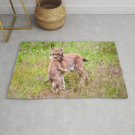 Marvelous Beautiful Lynx Mother Carrying Baby Close Up Ultra HD Rug