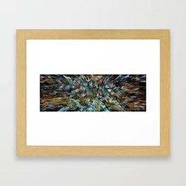 Desert Peacock Shag Framed Art Print