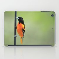 baltimore iPad Cases featuring Baltimore Oriole by Tammy Franck