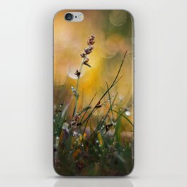 Beyond the Imagination iPhone Skin