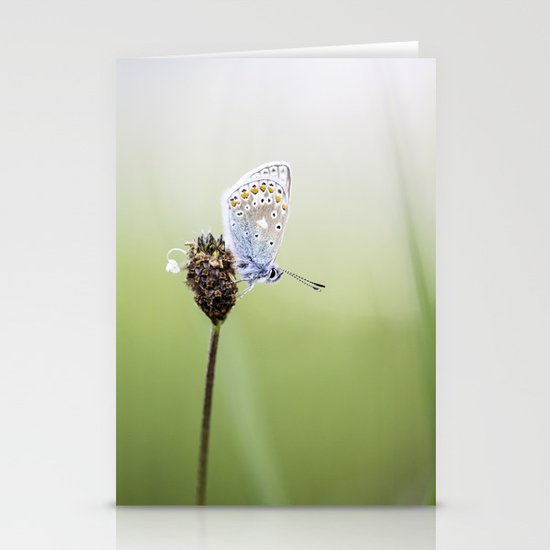 Common Blue Butterfly Stationery Cards