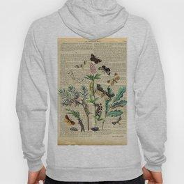 Book Art Caterpillar, Moths & Butterflies Hoody