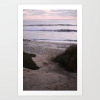 Quiet Path Art Print