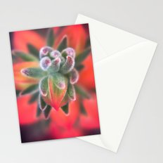 Radiate Stationery Cards