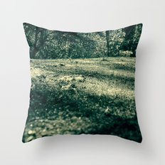 Frozen day n.4 Throw Pillow