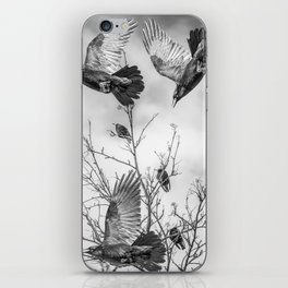 Krummar (raven) iPhone Skin