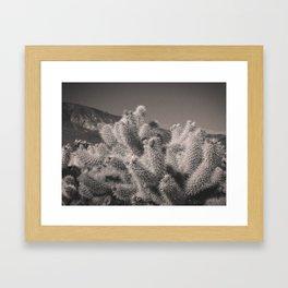 Jumping Cholla Cactus Framed Art Print