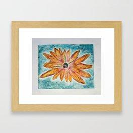 Orange Daisey Framed Art Print