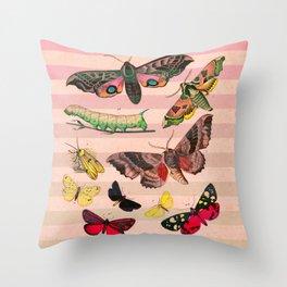 Bugs on Stripes Throw Pillow