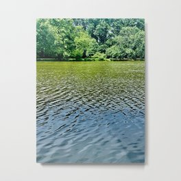 Arboreal Reflection Metal Print