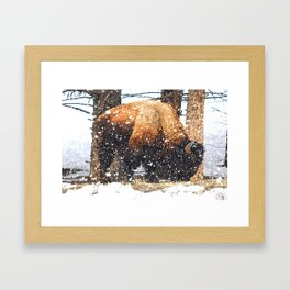 The Great Yellowstone Bison Framed Art Print