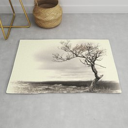 Lonely tree in autumn Rug