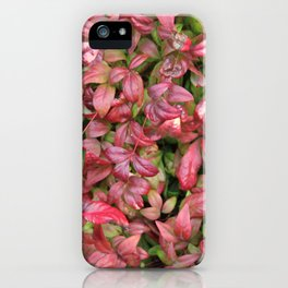 Red & Green Leaves iPhone Case