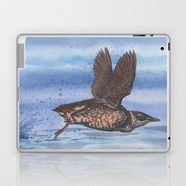Marbled Murrelet take off Laptop & iPad Skin