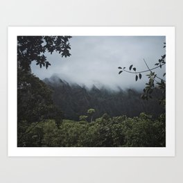 Foggy Oahu Green Art Print