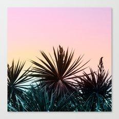 Sunset tropical palms Canvas Print