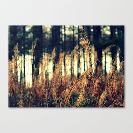 Spindles Canvas Print