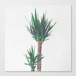 Yucca II Canvas Print