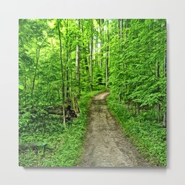 Spring walk in the woods along a dirt path Metal Print