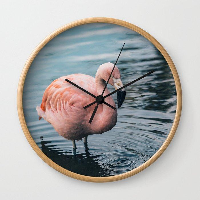 Lone Flamingo Wall Clock