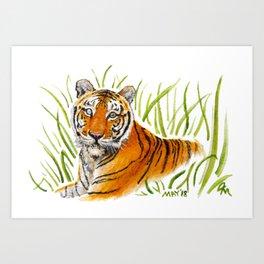 Zeus Tiger Bright Eyes Art Print