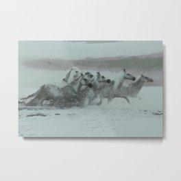 Seahorses III Metal Print