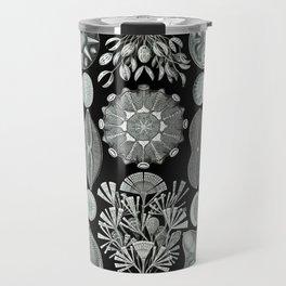 Ernst Haeckel - Scientific Illustration - Diatomea Travel Mug
