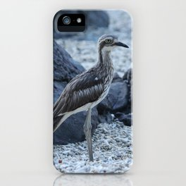 Curlew bird on the beach at Daydream Island Whitsundays iPhone Case