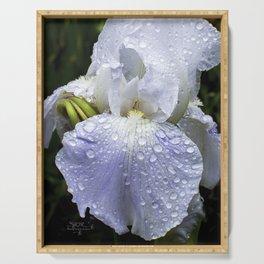 Iris Dew Serving Tray
