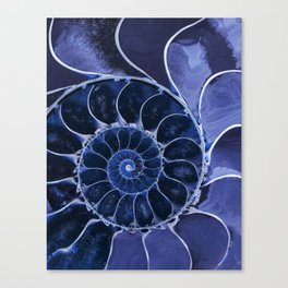 Blue fossil Canvas Print