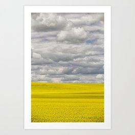 Alberta Canola Field Dramatic Cloudy Grey Sky Art Print