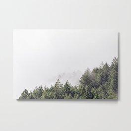 forest / mt. tamalpais Metal Print