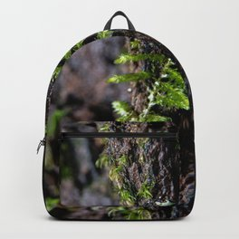 Moss growing up a tree Backpack