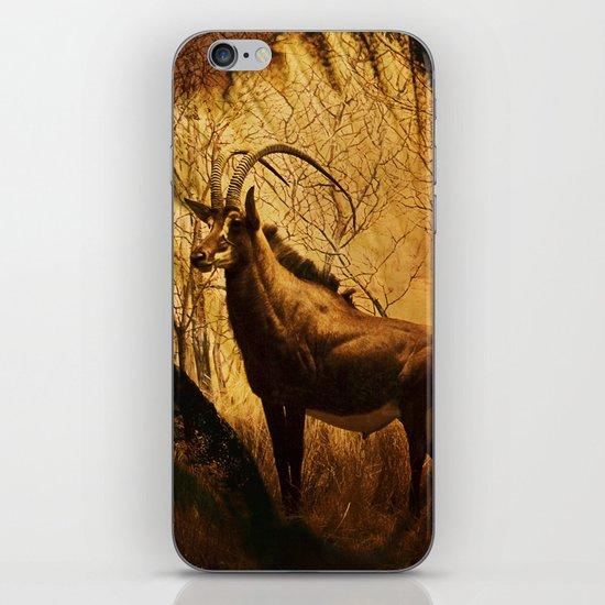 Diorama :: Antelope iPhone & iPod Skin