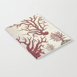 Naturalist Red Coral Notebook