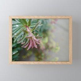 Pastels Floral Greenery Framed Mini Art Print