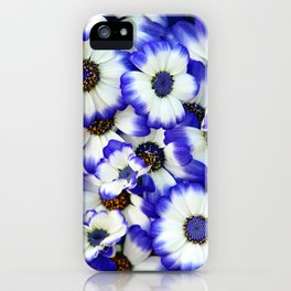 White and Blue Daisies I iPhone Case