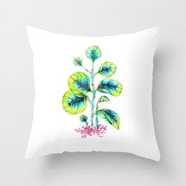 Peperomia Throw Pillow