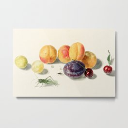 Elisabeth Geertruida van de Kasteele - Fruits Metal Print