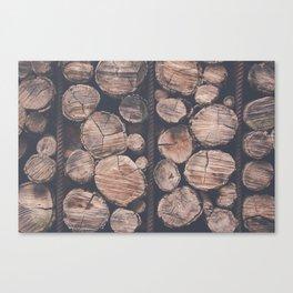 Switzerland stacking pile wood Canvas Print