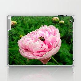 Bumble Bee on a Pink Peony Laptop & iPad Skin