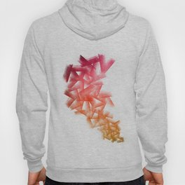 Red Cubical Abstraction Hoody