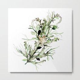Waterwheel Plant Metal Print