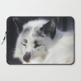White fox close-up in sunny day. Laptop Sleeve