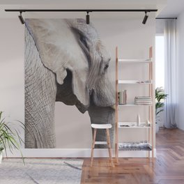Animal Photography Elephant Portrait | Wildlife | Nature | Pink | Blush Pink Wall Mural
